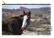 Lake Mead Mustang Carry-all Pouch