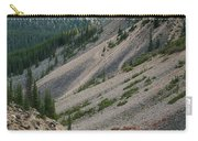 Lake Moraine Angles Carry-all Pouch