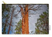 Lake Tahoe Trees On 89  Carry-all Pouch