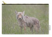Lamar Valley Coyote Carry-all Pouch