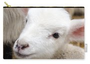 Lamb Carry-all Pouch by Michelle Calkins