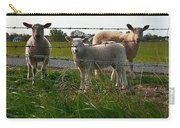 Lambs Behind The Wire Carry-all Pouch