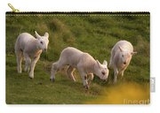 Lambs On The Meadow Carry-all Pouch