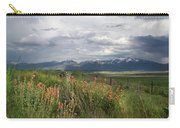 Lamoille Summit 2016 Carry-all Pouch