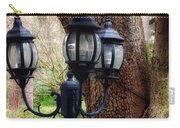 Lamppost And Oak Carry-all Pouch