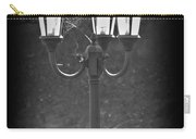 Lamppost Carry-all Pouch