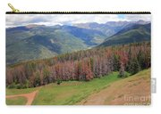 Landscape In Vail Carry-all Pouch