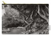 Landscape - The Forbidden Forest Carry-all Pouch