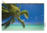 Lanikai Seascape Carry-all Pouch