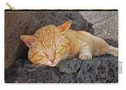 Lanzarote Ginger Carry-all Pouch