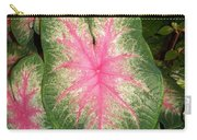 Large Coleus Plant Carry-all Pouch