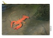 Large Crawdad Carry-all Pouch