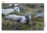Large Harbor Seal Colony In Scotland Carry-all Pouch