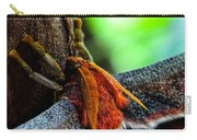 Large Moth Macro Carry-all Pouch