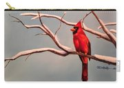 Last Snow Of Winter, Cardinal Carry-all Pouch