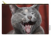 Laughing Kitty Carry-all Pouch