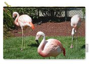 Lawn Ornaments Carry-all Pouch