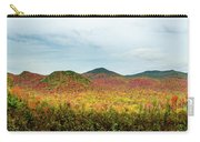 Layered Adirondack Colors Carry-all Pouch