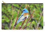 Lazuli Bunting  Carry-all Pouch