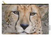 Lazy Cheetah Carry-all Pouch