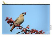 Le Gongleur Carry-all Pouch