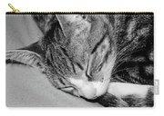 Lea Sleepy Cat Carry-all Pouch