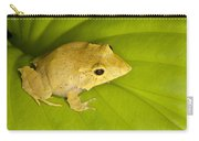 Leaf Frog Savvy Carry-all Pouch
