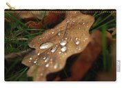 Leaf In Autumn. Carry-all Pouch