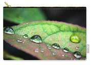 Leaf Veins And Raindrops Carry-all Pouch