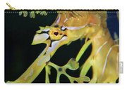 Leafy Sea Dragon Carry-all Pouch by Mariola Bitner
