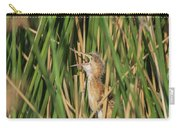 Least Bittern Yawn 3860 Carry-all Pouch