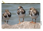 Least Sandpipers Carry-all Pouch