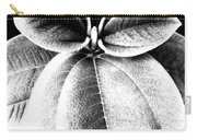 Leaves No. 36 Carry-all Pouch