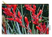 Lechuguilla Agave At Pilgrim Place In Claremont-california  Carry-all Pouch