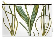 Leek And Irises, 1613 Carry-all Pouch