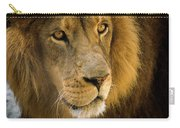 Leo The Lion Carry-all Pouch
