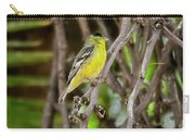 Lesser Goldfinch H57 Carry-all Pouch