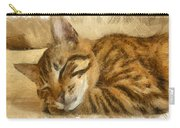 Let Sleeping Cats Lie Carry-all Pouch