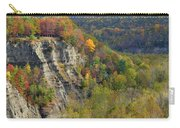 Letchworth Falls State Park Gorge Carry-all Pouch