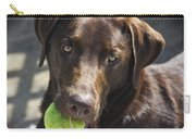 Lets Play Ball Carry-all Pouch