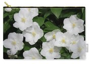 Lewis' Mock-orange Carry-all Pouch