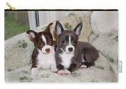 Lexi And Gracie Carry-all Pouch