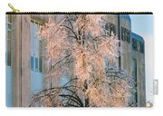 Liberty Court House Carry-all Pouch