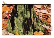 Lichen Castle In Autumn Leaves Carry-all Pouch