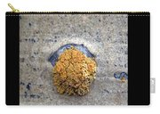 Lichen On The Trees 1 Carry-all Pouch