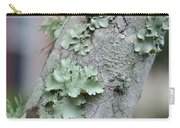 Lichens 2 Carry-all Pouch