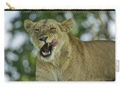 Licking Lion Carry-all Pouch