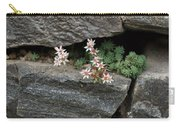Life On Bare Rock - Pale Pink Succulents On The Wall Carry-all Pouch