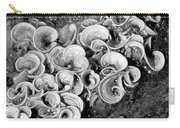 Life On The Rocks In Black And White Carry-all Pouch