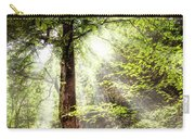 Light Along The Trail Carry-all Pouch